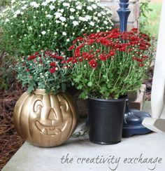 Spray paint cheap plastic pumpkin buckets in Rustoleum gold and turn into flower pots or vases for inexpensive Halloween decor {The Creativity Exchange}