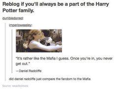 Did Daniel Radcliffe just compare the fandom to the Mafia