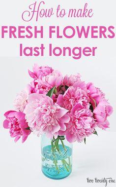 GREAT tips on how to make fresh flowers last longer!