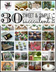30 Sweet and Simple