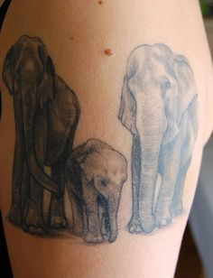 Baby Elephant Tattoo Pictures