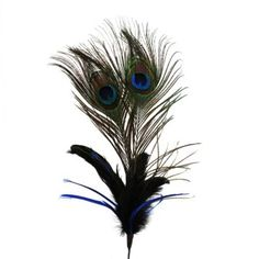 Peacock Feathers Stem