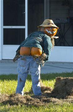 harvest moon, funni, halloween pumpkins, fall, scarecrows, halloween ideas, yards, moon pictures, happy halloween