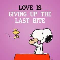 Love is giving up the last bite.