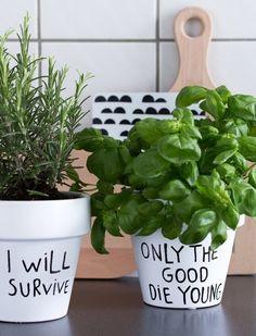 green thumb, kitchn ideas, planter pots, plant pots, funny diy