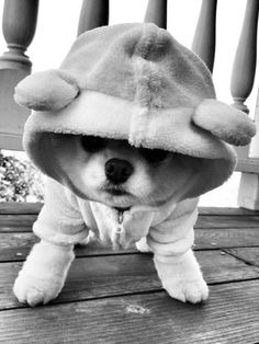 I'm all ready for Sandy!!