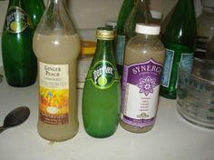 lacto-fermented sodas