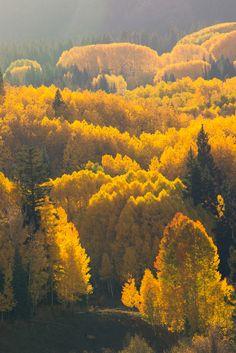 by ©Marc Reece Kebler Pass, Colorado, USA