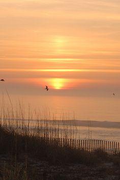 Sunrise, Carolina Beach, NC