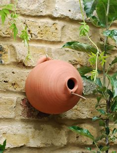 Blue tit terracotta bird pot