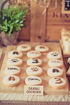 African party theme, cookies