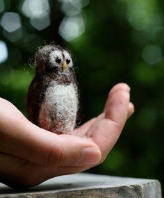 tiny needle felted owl   <3