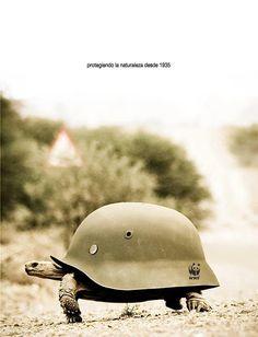 WWF - protecting ani
