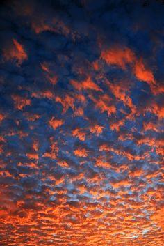 Auburn Sky