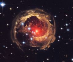 V838 Monocerotis. Photo by Roberto Colombari / NASA / TheHubble HeritageTeam (AURA/STScI)