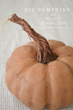 Check out this amazing DIY post on creating Pumpkins with Realistic Looking Stems   www.andersonandgrant.com