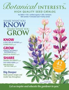 Seed Companies I Love! (And You Might Too!)  Heirloom, non-gmo, and niche seed companies. How to request catalogs, as well as resources for finding the right seed company for you!