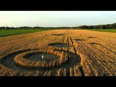 Netherlands crop circles July 2013 - Stadskanaal and Standdaarbuiten