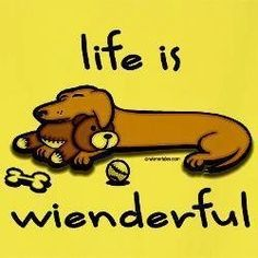 Life is wienderful ♥