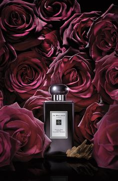 ♔ The sweet smell of roses