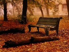 Nightingale (Yanni) - Reminds me of home...spirit bench, Fall colors and birds.