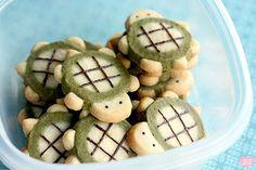turtle cookies, turtl cooki, turtl icebox, icebox cooki