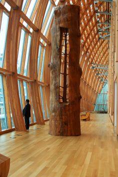wood art, artists, interior, the knot, tree trunks, giusepp penon, the artist, place, sculptur