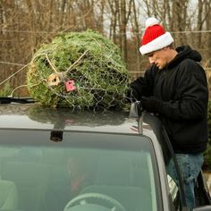 How to transport your holiday tree without risking life, limb, or damage to your house. | Photo: Chuck Franklin/Alamy | thisoldhouse.com