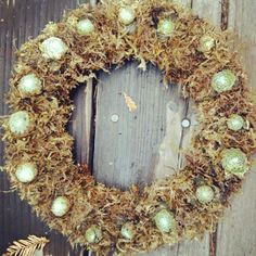 #succulentwreath number 2  #xmasgifts #whowantsone http://www.russwholesaleflowers.com/wholesale-succulent-sale  RusswholesaleFlowers.com offers the best wholesale succulent prices available to the public online.  wholesale succulents for bouquets, special events, wreaths, diy and more.  3 different sizes to meet your needs.