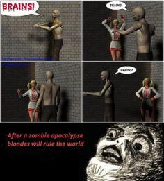 Zombie Apocalypse News Alert Broadcast on US TV