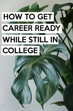 How to get Career Re