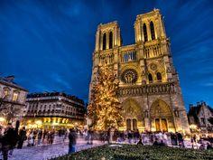 Notre Dame de Paris at Christmas. So stunning.
