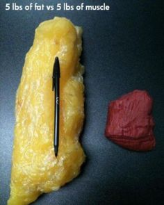 a size comparison between 5 pounds of fat and 5 pounds of muscle. Impressive.