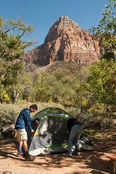 Watchman campground, Zion...one of my favorite campgrounds!