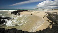 La Isla Isabela, Las Islas Galapagos