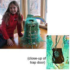 Sydney's Leprechaun Trap