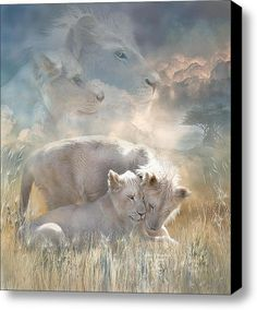 Spirits Of Innocence Stretched Canvas Print / Canvas Art By Carol Cavalaris