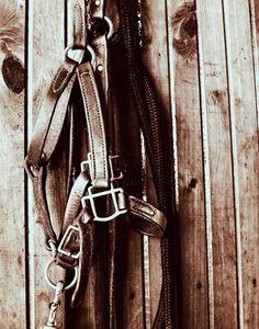 Horse halter, halter, tack, horse tack, equine, bridle, horse halter photo. $25.00, via Etsy.