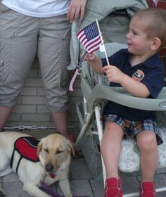 Alert Service Dogs: Diabetic Alert Dogs, Dogs for Diabetics-- this web page looks the most promising so far...