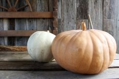 THE HISTORY OF PUMPKIN CARVING