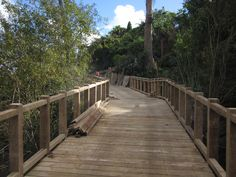 I've had the chance to create a walkers haven along the Waikato River. I'd like to explore the work of other track builders by walking their routes.    This was taken as we neared the end of construction of the Te Hikuwai Cycleway Boardwalk for Hamilton City Council. Walk it when you get a chance! #greatwalker