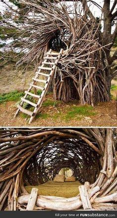 Would be eaten alive by bugs but still pretty darn cool lol!