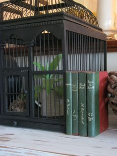 I Love Bird Cages With Plants In Them