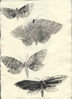 moths on beautiful paper