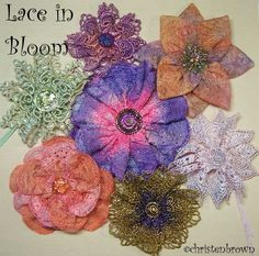 Lace in bloom