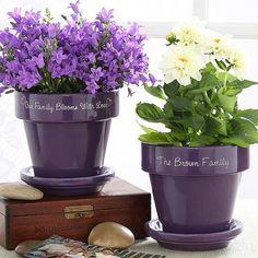 40 Ideas to Dress Up Terra Cotta Flower Pots