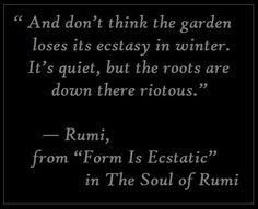 """And don't think the garden loses its ecstasy in winter. It's quiet, but  the roots are down there riotous.""  —	 Rumi, from ""Form Is Ecstatic"" in The Soul of Rumi"