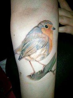 love robins!