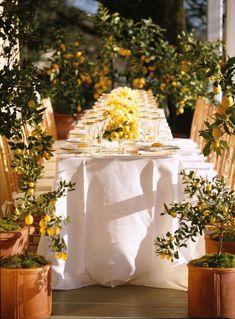 Outdoor lemon tablescape