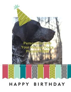 Your Dog's Photo Here - Personalized Pet Photo Card